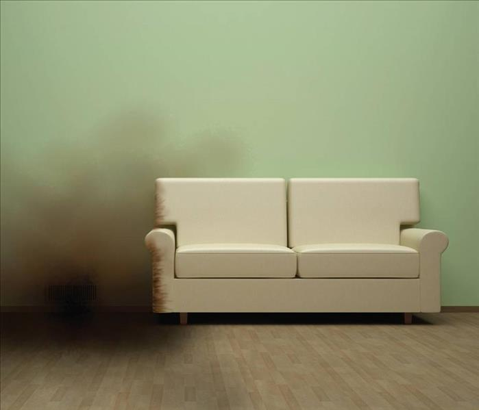sofa in front of a green wall with a cloudy of soot entering the photo from the left.