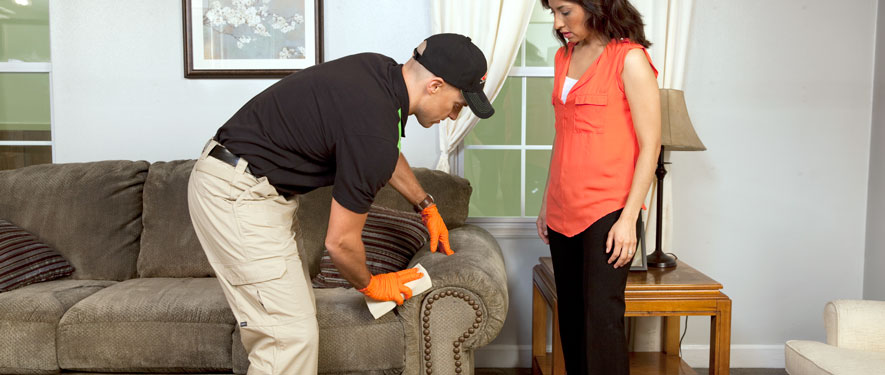 Salisbury, NC carpet upholstery cleaning